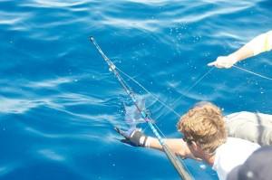 Tips on catching daytime swordfish