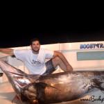 Big Swordfish