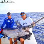 Big swordfish- monster swordfish- record swordfish