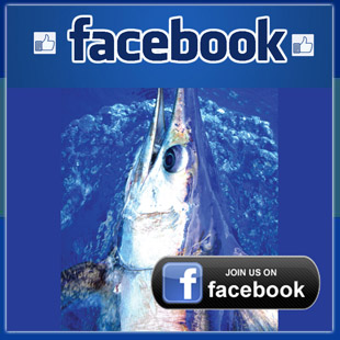 Booby Trap Fishing Team Facebook - daytime swordfishing techniques - daytime swordfishing charters