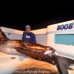 Catching monster swordfish