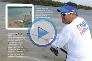 PRESS-BD-OUTDOORS-ARTICLE-14-FOOT-SAWFISH-FLORIDA-KEYS2
