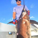 daytime swordfish picture