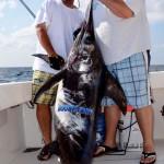 swordfish-boobytrap-LG12