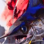 swordfish-boobytrap-LG13