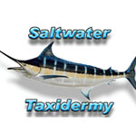 Logo-Sponsors-SaltwaterTaxidermy