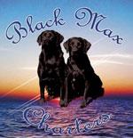 Logo_Sponsors_BlackMax
