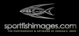 Sport Fish Images sponsors swordfish seminiar Texas