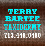 TerryBarteetaxidermy
