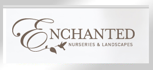 enchanted_logo