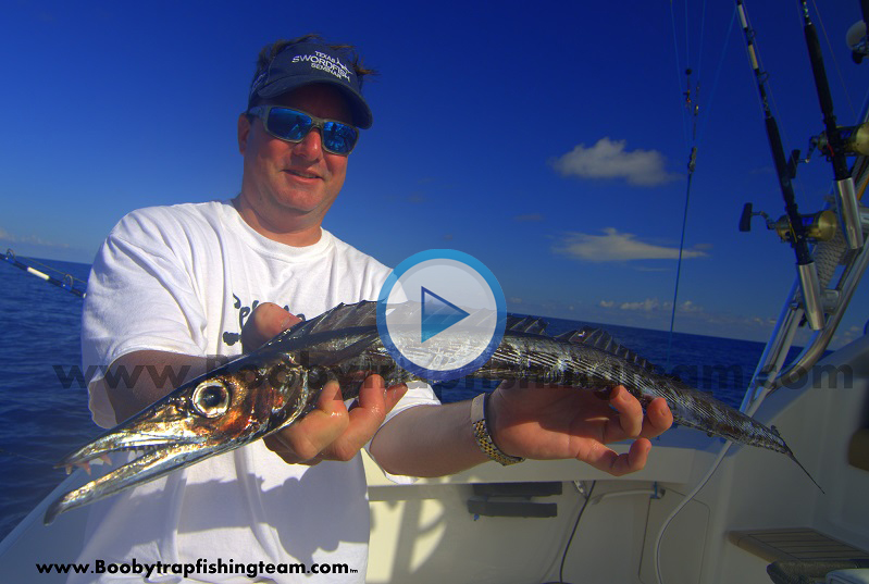Texas swordfishing charters